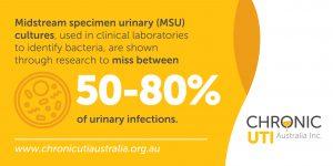 Negative urine cultures